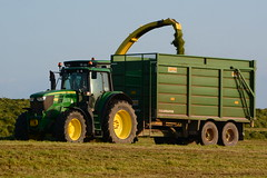 John Deere 7700 SPFH filling a Smyth Trailers FieldMaster Silage Trailer drawn by a John Deere 6170M Tractor (Shane Casey CK25) Tags: john deere 7700 spfh filling smyth trailers fieldmaster silage trailer drawn 6170m tractor jd green togher cork city first cut firstcut 1st silage16 silage2016 grass grass16 grass2016 winter feed fodder county ireland irish farm farmer farming agri agriculture contractor field ground soil earth cows cattle work working horse power horsepower hp pull pulling cutting crop lifting machine machinery nikon d7100 tracteur traktor traktori trekker trator cignik collecting collect