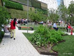 Begrünte Wände und Beete_582 (urban-development) Tags: urban gardening stadtökologie lebensqualität wien