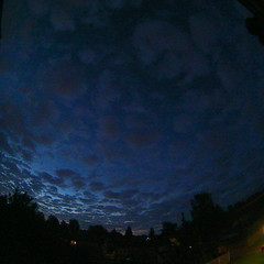 Bloomsky Enschede (August 8, 2016 at 05:08AM) (mybloomsky) Tags: bloomsky weather weer enschede netherlands the nederland weatherstation station camera live livecam cam webcam mybloomsky