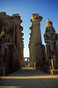 Ägypten 1999 (260) Tempel von Luxor: Säulenkolonnade