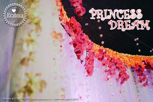 Braham-Wedding-Concept-Portfolio-Princess-Dream-1920x1280-05