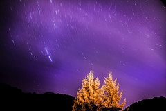 Star trails at 3:20 AM, 32 minutes long exposure  #startrails #stars #clouds #purpleclouds #purple #sky #purplesky #astrophotography #longexposure #hills #trees #lights #nature #croatia (dario0806) Tags: longexposure purplesky purpleclouds clouds sky purple stars croatia trees nature startrails astrophotography lights hills