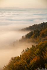 Above All Things (DobriMv) Tags: autumn mountain nature fog clouds forest sunrise landscape europe outdoor bulgaria valley inversion temperature balkans eastern mystique