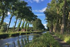Damme (xplorengo) Tags: damme kanaal damsevaart vaart water trees bomen belgique belgium belgi belgie vlaanderen flanders flandre flandres green hiking canal