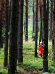 In the woods (agadzicio) Tags: boy wood forest walk chopiec las spacer child kid nagrzyby