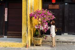 Street Scene, Hoi An (EvanGilder) Tags: danielle people travel vietnam hoian buddhism unesco temple