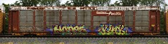 Horse/Kink (quiet-silence) Tags: graffiti graff freight fr8 train railroad railcar art autorack horse kink ld sp southernpacific ettx854225