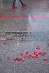 . (Fabian Schreyer // shootingcandid) Tags: street candid strasenfotografie red rose leaves graphic munich oktoberfest wiesn