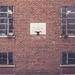 Brick wall hoop #3