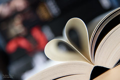 Love Books (steved_np3) Tags: love paper reading dof heart pages books readin