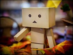 Danboard (David Panevin) Tags: street japan toy toys japanese tokyo bokeh olympus characters  akihabara figures omd em1  urbanfragments bokehlicious davidpanevin leicadgsummilux25mmf14asph