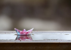 Paper Boat (nikagnew) Tags: pink reflection water paper puddle boat origami soft pastel aftertherain folding muted paperboat