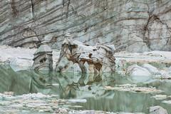 "Ice ""head"" in Cavell glacier Pond ? (FollowingNature) Tags: glacier mountedithcavell jaspernationalpark canada followingnature banffnationalpark lakes canadianrockies nikond800 nikon1635mm banffphotospots banffphotolocations banffphotos jasperphotos cloudyday banfftouristspots"