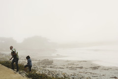 Passing the time (gracedzhang) Tags: passthetime flickrfriday summer california travel america photography capture nikon family portrait candid cute big sur pebble beach nature landscape outdoors fog beautiful sunny golden hour rocky shore ocean water natural indie
