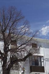Entre el cielo y el suelo. (elojeador) Tags: plaza casa cable persiana árbol antena farol fachada balcón capileira lasalpujarras baranda elojeador contendenciaaquedarmecalvo