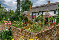 ''An Unusual English Cottage'' (marcbryans) Tags: heathrow longford airport airfield thatched cottages garden flowers wall architecture landscape pretty wideangle nikond7100 tokina1116mm village