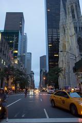 Looking up 5th Avenue (stynxno) Tags: newyorkcity saintpatrickscathedral