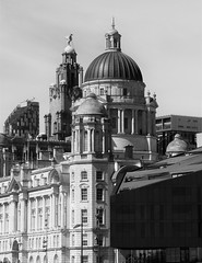 Liverpool Skyline with Liver Building - Black and White (Gilli8888) Tags: liverpool docks albertdocks merseyside skyline city liverbuilding dome windows