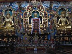 IMG_2471 (Sasha India) Tags: india buddhism karnataka indien hindistan buddhismus 印度 भारत littletibet הודו 인도 இந்தியா الهند буддизм هندوستان индия ινδία індія карнатака հնդկաստան אינדיע อินเดีย ભારત ინდოეთში