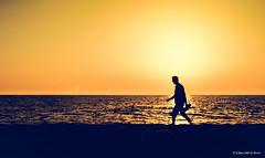 _DSC1450 (peter3400) Tags: sonyalpha sony ilce 7ii 7m2 summer sunset warmth silhouette minolta minolta4ever manual 3570f35 macro md albania