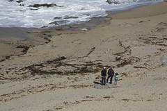 A walk in Carmel Meadows (LOLO Italiana) Tags: carmelmeadows pacificocean carmelmiddlebeach rockformations seascapes landscape carmel ca nature monasterybeach sand beach