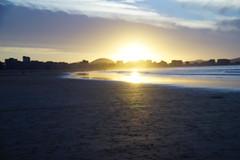 _DSC0878 (Parrasgo) Tags: espaa sunlight luz sol beach zoo mar spain seagull tiger iglesia playa rhino reflejo avestruz animales giraffe olas sunbeam vidriera cantabria norte horamagica