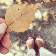 Falso otoo (Graella) Tags: pies feet peus selfie retrato retrat portrait street outdoor hand mano ma hojas leaves otoo autumn
