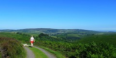 Mad dogs and Englishmen. (A tramp in the hills) Tags: longmynd shropshire bridges ratlinghope stiperstones