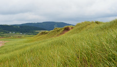 The Green Dunes Of West Mabou (TheNovaScotian1991) Tags: westmaboubeachprovincialpark capebreton novascotia canada mabou 1757littlemabourdmabouceilidhtrail dune sand mountains clouds sky trees island grass beach