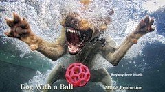 Dog with a Ball (Serge Quadrado) Tags: adv bouncy catchy driving energetic feelgood friendly fun game grooving guitar handclaps happiness inspirational laught optimistic party pet playful positive rhytmic rock smiling summer teenagers uplifting youth