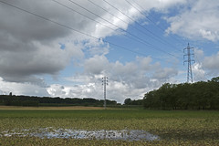 DSC_2765 k (Frie Van Grunderbeeck) Tags: belgium belgi vlaamsbrabant hageland outdoor landschap landscape lubbeek wolk cloud pyloon elektriciteit electricity plas puddle rain regen