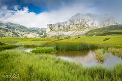 Picos de Europa National Park - Asturias - Spain (PhotoGSuS) Tags: asturias asturies principadodeasturias principalityofasturias summer verano montaas mountains covadonga lagos lakes amazing nature landscape naturaleza verde paisaje espaa spain cantbrico