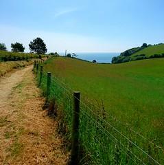 Southwest coastpath Devon (Hugo D'luvly) Tags: southwestcoastpath dawlish teignmouth devon uk england westcountry cameraphone sonyexperiaz5