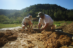 mountaing cobbing (The Year of Mud) Tags: theyearofmud naturalbuilding cob clayplaster lightclaystraw berea kentucky southslopefarm