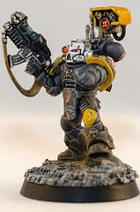 Devastator Sgt (Will Margett Photography) Tags: gamesworkshop warhammer 40000 40k spacemarine redscorpion devastator model miniture nikon d7000