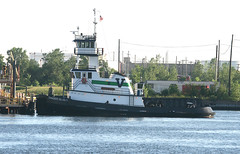 TANGIER ISLAND - Vane - in New York, USA. August, 2016 (Tom Turner - SeaTeamImages / AirTeamImages) Tags: tangierisland vane tow towing channel water waterway spot spotting tomturner green kvk killvankull tug tugboat vessel statenisland newyork bigapple unitedstates usa nyc marine maritime pony port harbor harbour transport transportation
