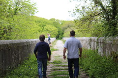 viaduct. (Katie-Anne Jones) Tags: camera dylan canon paul photography one jones photo funny cornwall dad photographer sam brother katie over christopher location viaduct valley edge laugh another grandad chill subjects throwing banter luxulyan 700d