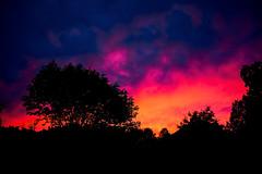 Ablaze (Dan Haug) Tags: fujifilm x100s 23mm ablaze silhouette stormy sky greely residential neighborhood trees cornfield explore explored