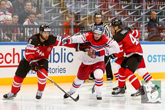 "IIHF WC15 SF Czech Republic vs. Canada 16.05.2015 033.jpg • <a style=""font-size:0.8em;"" href=""http://www.flickr.com/photos/64442770@N03/17767785262/"" target=""_blank"">View on Flickr</a>"