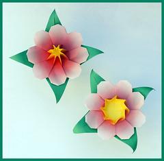 Flower 2 (Shuzo Fujimoto) (De Rode Olifant) Tags: flower origami shuzofujimoto fujimoto marjansmeijsters paper paperfolding