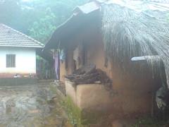 DSC03548 (Gokul Chakrapani) Tags: waterfalls karnataka westernghats bolle charmadi
