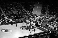 RoadToRio 2K16 (michelangelomusso) Tags: italy torino italia basket sony son turin bianco nero filippo biancoenero nazionale palazzetto forzaazzurri a6000 preolimpico preolimpicotipo