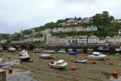 View of Looe (Eddie Crutchley) Tags: europe england cornwall looe coast outdoor boats bridge
