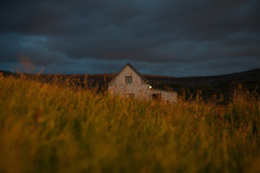 Field (the bbp) Tags: islanda iceland island campo field casa home house tramonto sunset cielo sky nuvole clouds erba grass fiori flowers intimit thebbp