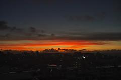 Good morning, Okinawa! (komehachi888) Tags: stilllife summarit5cmf15 sonyalpha7r voigtlandervmeclosefocusadapter