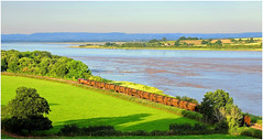Along the banks of the River Severn (Welsh Gold) Tags: england station train river power gloucestershire severn oil lindsey refinery tanks aberthaw purton 66025 6z44