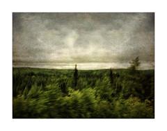 Chisasibi Tundra (ra1000) Tags: landscape quebec treeline qc tundra icm chisasibi canadianshield