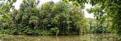 Diest 300716 06 (David Vanthienen) Tags: walk natu hike walking city stad diest hiking wandelen wandeling dieststadcitywandelingwandelenhikinghikewalkingwalknatuurnaturecitadelhalvemaandemerecocenterwarandebegijnhofbeguinage