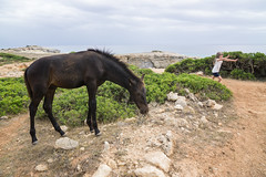 Menorca-16071463 (Lee Live: Photographer) Tags: beach ciutadella crazygolf holiday leelive mahon ourdreamphotography sonbou sunset