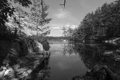 Cranberry Bog Trail, Killarney Provincial Park, Ontario, Canada (alex_7719) Tags: ontario canada killarneyprovincialpark killarney lake pond water cranberrybogtrail trees